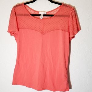 Ambience Apparel w/Mesh Short Sleeve Top, Size 2X